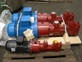 Pumps for lube oil system